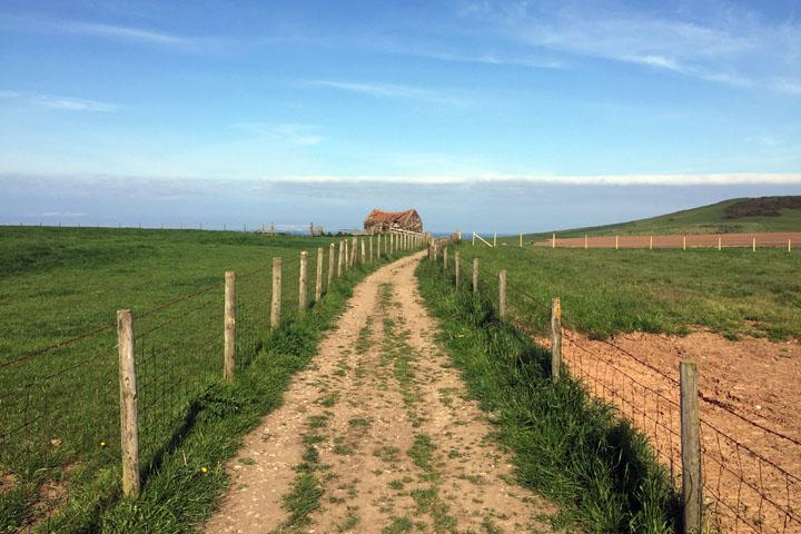 Fletcher's Farm